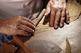 Closeup of Cuban cigar making